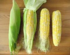 Frozen Cooked Peeled Corn