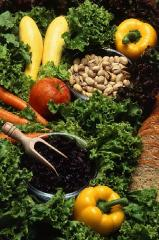 Voga Organic Fertilizer