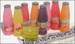 Fruit Flavor Drink - Berry Brand