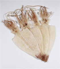 Dried Skinless Squid (Apollo)