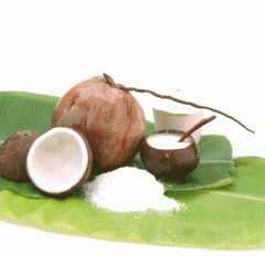 Coconut Milk Fat 19-21%