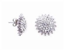 Earrings KER019