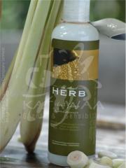 Herb Fairy Conditioner