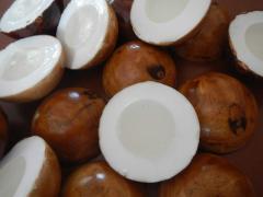 Coconut Fancy Handmade Soap Thailand