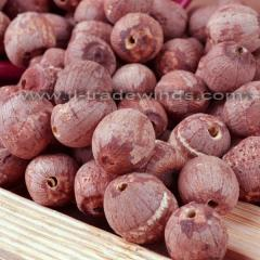 Dried lotus seeds (Raw material)