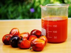 Жирные кислоты пальмового масла