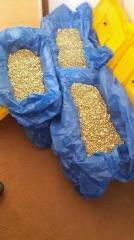 Gold bars and gold nugget