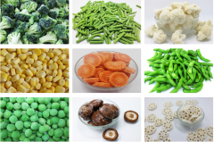 Frozen food Of All Varieties