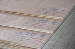 Generic Plywood
