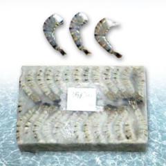 Frozen B/T Shrimp Headless Shell On
