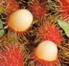 Canned Rambutan product of Thailand