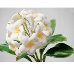 Artificial Plumeria Flower