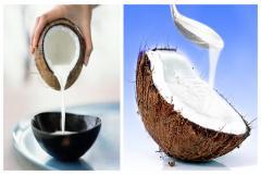 Chef's Choice Frozen Coconut Milk