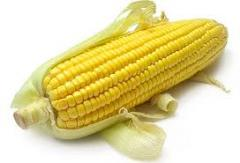 Sweet Kernel Corn
