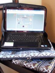 Silk Laptop Case