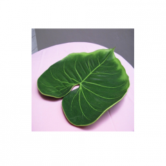 Philodendron Placemat