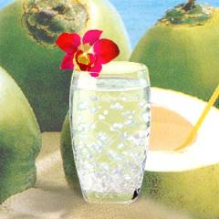 Canned Coconut Juice, Canned Coconut Juice with