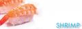 Fresh Frozen Shrimp