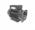 Pool & Spa Pump Motors  83 Series