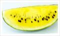 Yellow flesh Water Melon
