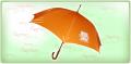 Umbrella nylon