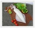Squid (Loligo formosana)