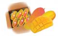 Mahachanok Mango