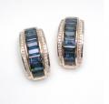 Earrings ESK01722