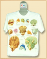 Dinosaurus T-shirt  K-041