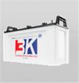 Truck & Bus battery