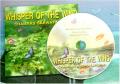 Greenmusic CD Album Whisper of The wind