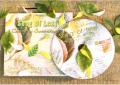 Greenmusic CD Album Song of Leaf
