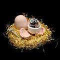 Toy Surprise Egg Set