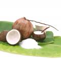 Coconut Milk Fat 19-21%