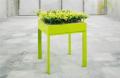 Garden Planter Table (Short)