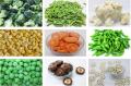 Frozen food Of All Varieties