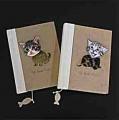 Kitty notebooks