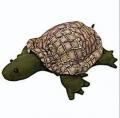 Plush tortoise